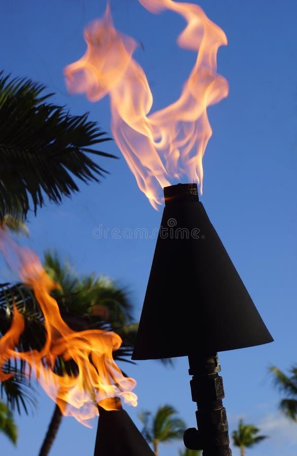 Tiki Torch Fire photo libre de droits