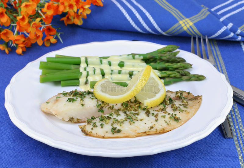 Tilapia fillets with a side of asparagus hollandaise. Two tilapia fillets with a side of asparagus in hollandaise sauce stock photography