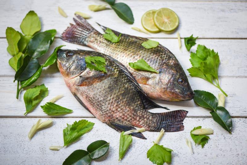 Tilapia, sötvatten och citronlimeört för matlagning i asiatiska restauranger - Färsk rå tilapia på trä royaltyfria foton