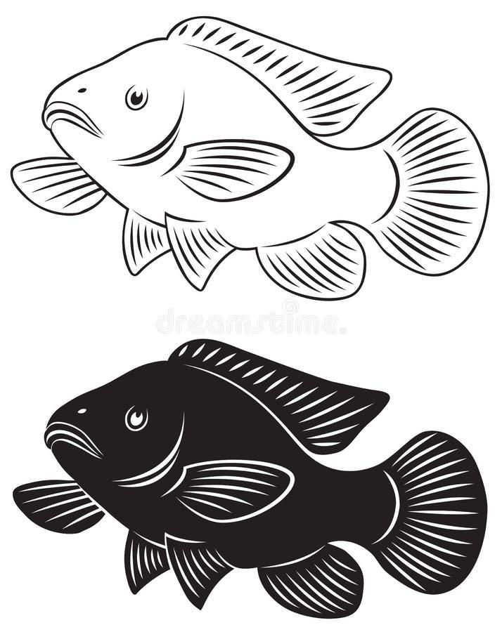 Tilapia vissen stock illustratie