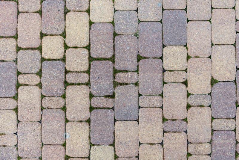 Download Tile stock image. Image of tiled, flooring, background - 83713611