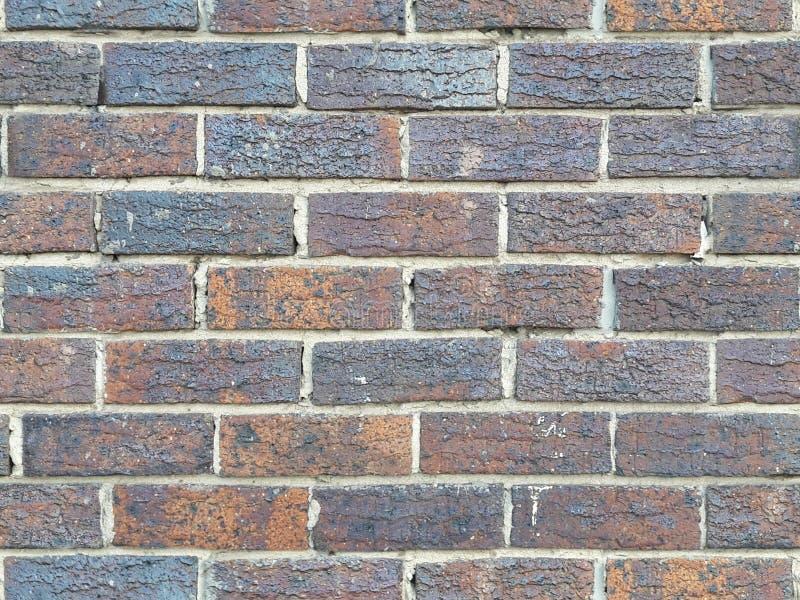 Tileable cegły 3 fotografia royalty free