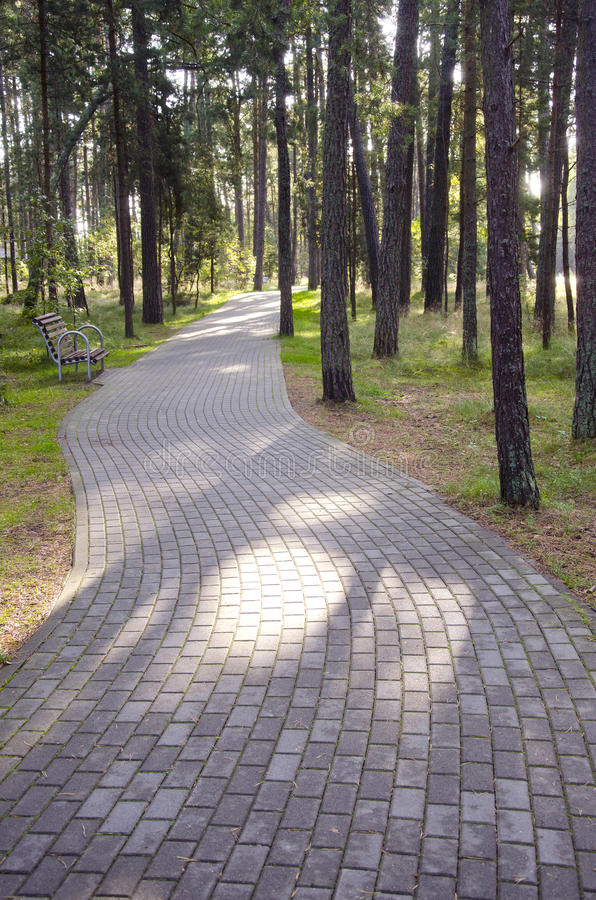 Free Tiled Path Curve In Park Forest. Bench Resort Area Stock Image - 23517241
