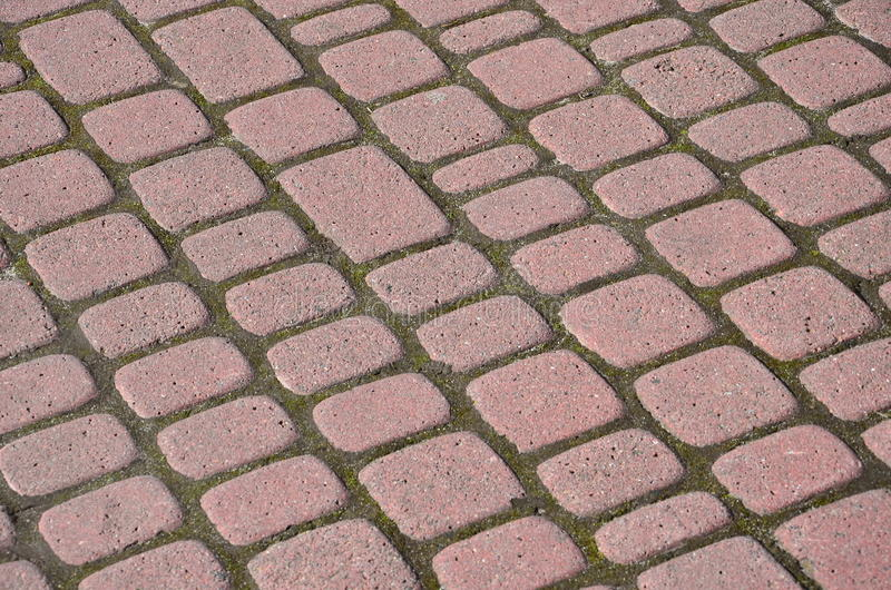 Tiled pavement background. Circle paving royalty free stock images