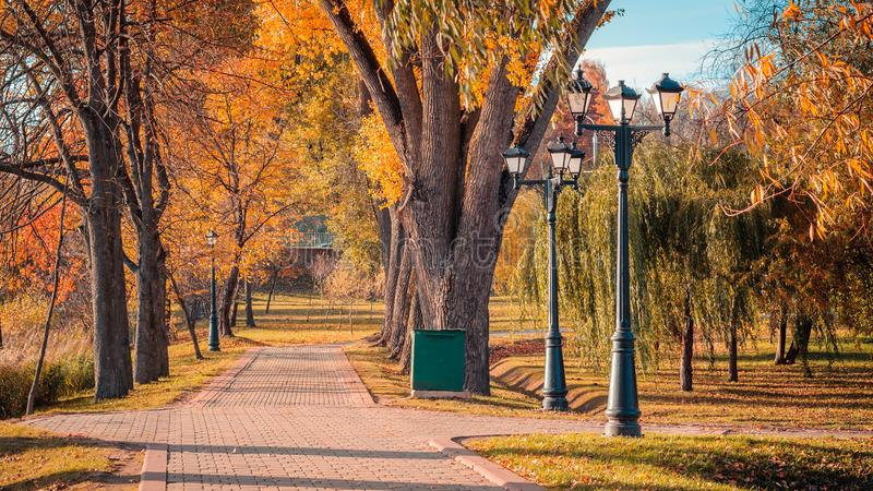 Tiled walking alley in the autumn city park with bright autumn foliage on large trees, street lights in good weather on a nice day. Colorful golden autumn. tiled royalty free stock photography