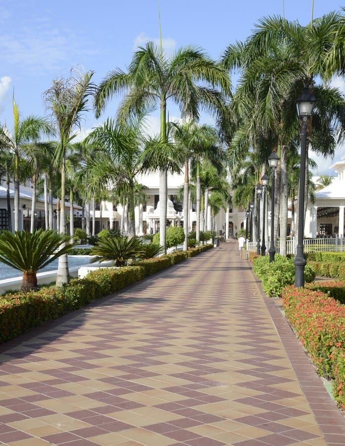 Tiled walkway at a tropical resort stock image