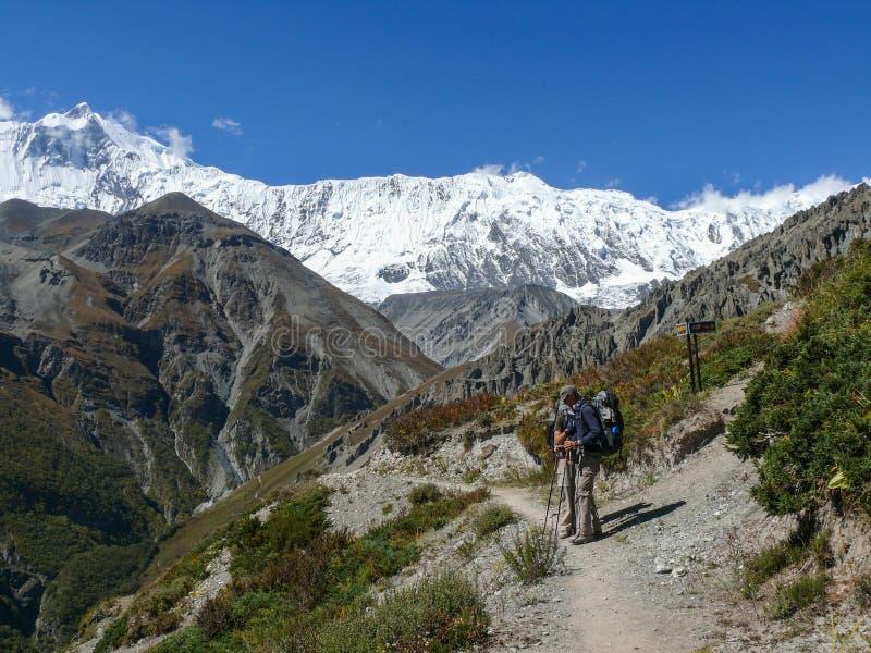 Tilicho osiąga szczyt Tilicho podstawowy obóz, sposób, Nepal obrazy royalty free