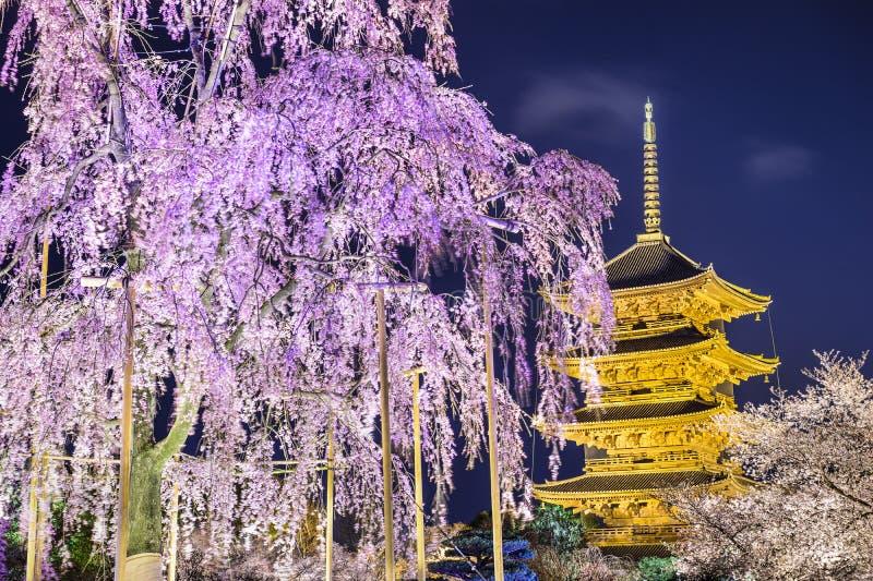 Till-ji pagod på våren royaltyfria bilder