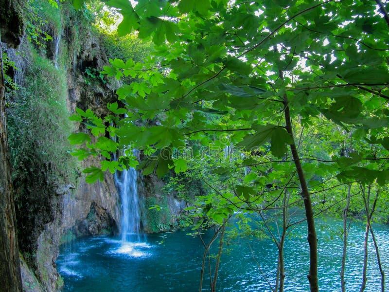 Till och med sidorna kan du se hur nedgången för vatten beautifully in i den blåa sjön royaltyfri fotografi
