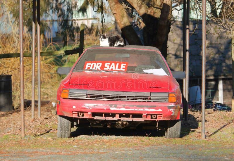 Till salu använd sportbil och husdjur royaltyfria foton