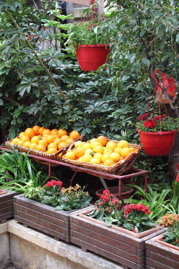 Till salu apelsiner royaltyfria foton