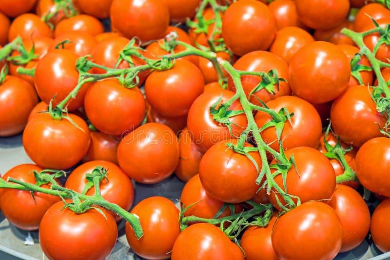Download Till Salu Röda Mogna Tomater Fotografering för Bildbyråer - Bild av bostonian, sunt: 37344307