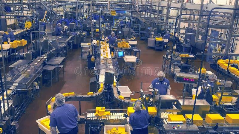 TILLAMOOK, OREGON, DE V.S. - 1 SEPTEMBER, 2015: brede mening van de grote verpakkingsruimte bij de fabriek van de tillamookkaas royalty-vrije stock afbeelding