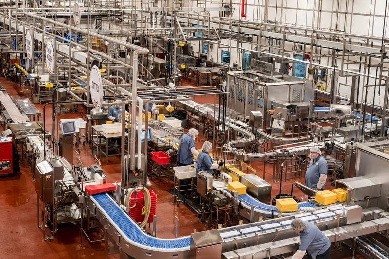Tillamook creamery & cheese factory. Tillamook, OR / USA - June 23 2018: Tillamook creamery factory workers in masks on a cheese production line stock photography