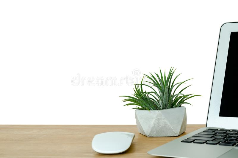 Tillandsia airplant put in designed cement pot decorates on the wooden desk in office. Tillandsia airplant which is modern plant put in designed cement pot stock image