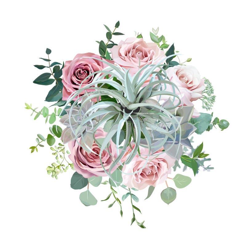 Tillandsia, echeveria Succulents, blasse staubige rosa Rosen, Eukalyptus, Gr?n vektor abbildung