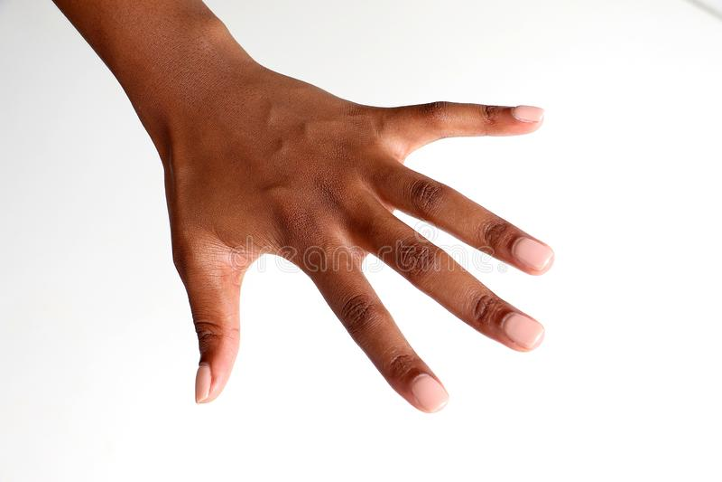 Tillbaka av en ?ppen manicured hand av en svart afrikansk indisk kvinnlig royaltyfri fotografi