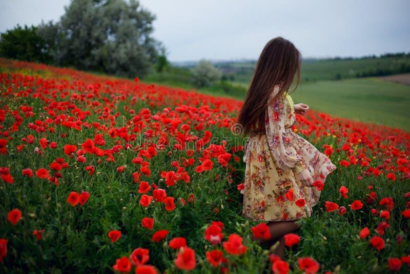 Tillbaka av en härlig ensam ung flicka med långt hår och den blom- klänningen går i ett rött vallmofält i naturlandskap arkivbilder