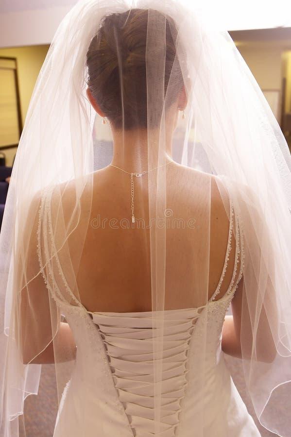 tillbaka härliga bruddetaljer klär show till royaltyfri fotografi