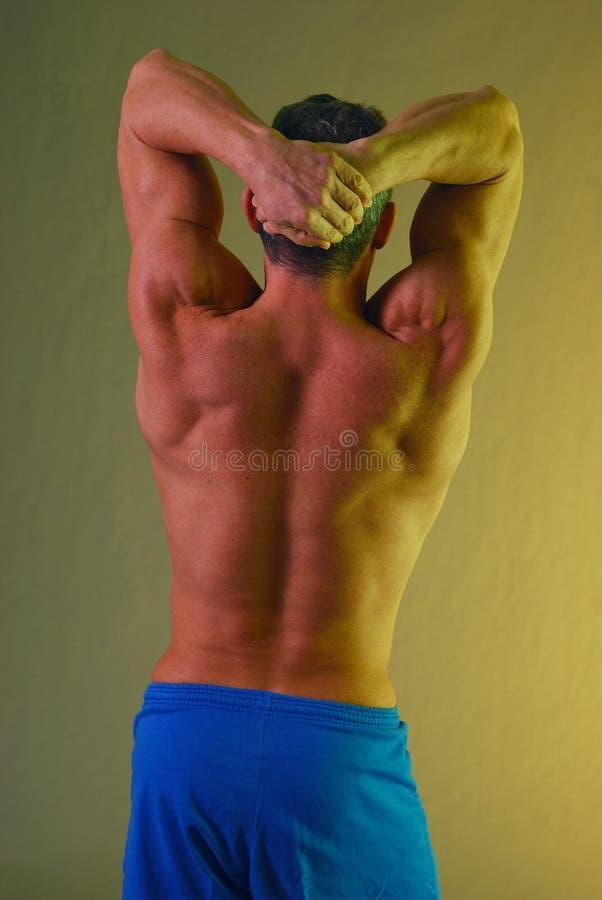 tillbaka male muskler som sträcker yellow royaltyfria foton