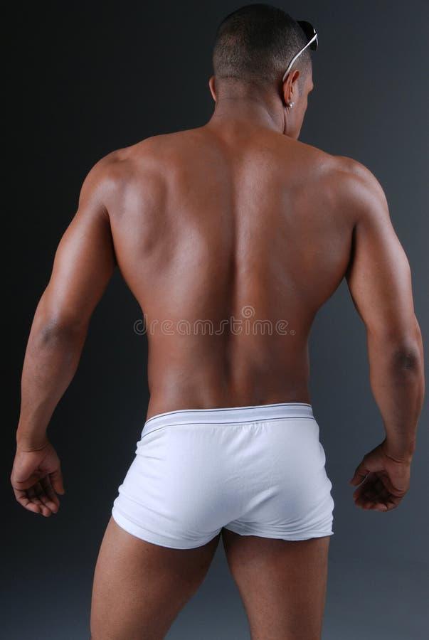 tillbaka muskulöst arkivfoto