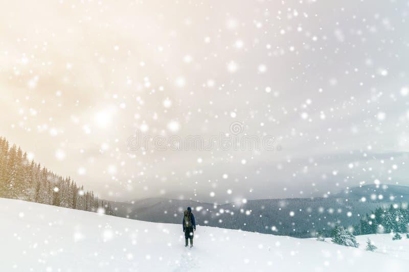 Tillbaka sikt av den turist- fotvandraren i varma kläder med ryggsäcken som går molniga uppåtriktade berg som täckas med snö på p royaltyfri fotografi