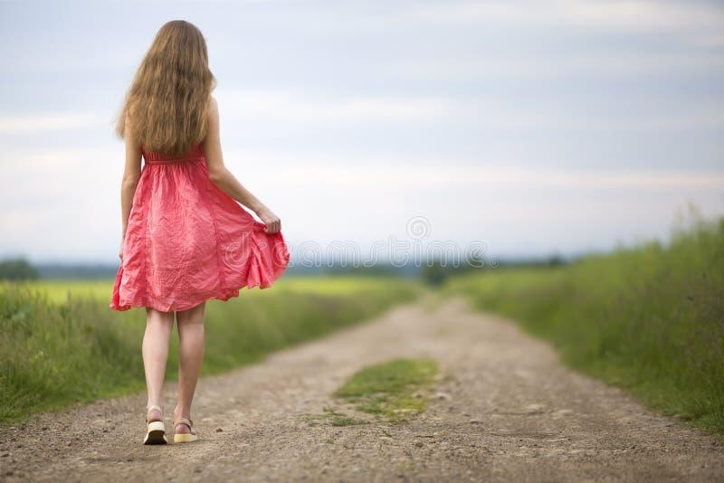 Tillbaka sikt av den unga romantiska slanka kvinnan i röd klänning med långt hår som går vid jordvägen längs grönt fält på solig  arkivbild