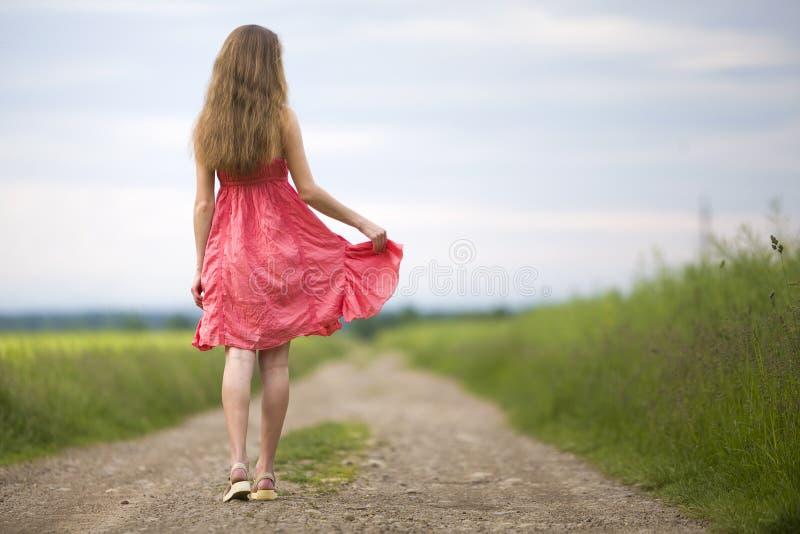 Tillbaka sikt av den unga romantiska slanka kvinnan i röd klänning med långt hår som går vid jordvägen längs grönt fält på solig  royaltyfri fotografi
