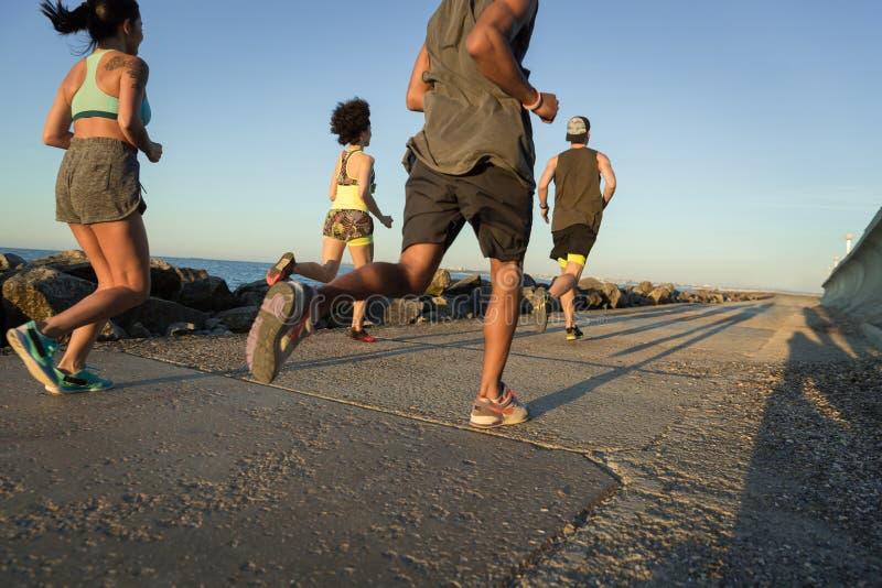 Tillbaka sikt av en grupp av ungt sportigt jogga för vänner royaltyfri foto