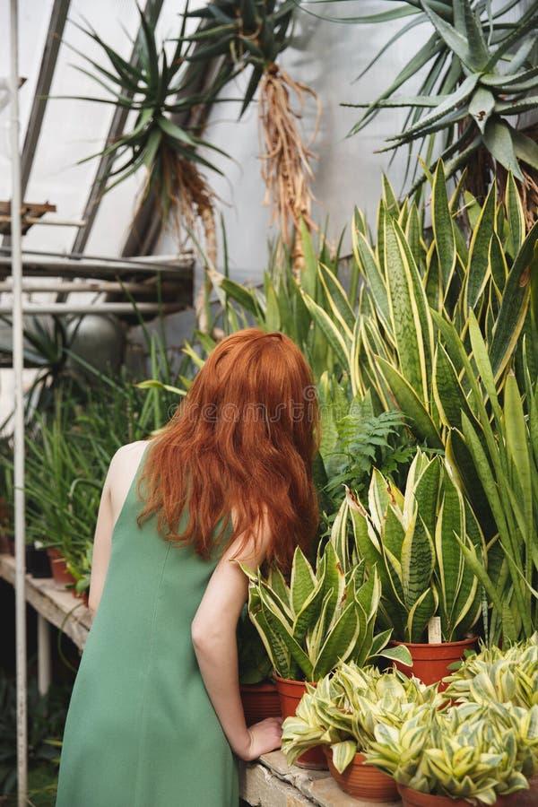 Tillbaka sikt av rödhårig manflickan nära grönska fotografering för bildbyråer