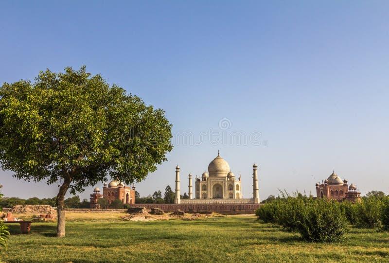 Tillbaka sikt av Taj Mahal i Indien royaltyfria bilder