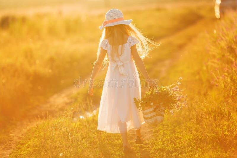 tillbaka sikt Lycklig ung attraktiv flicka som går i ett fält på solnedgången royaltyfria foton