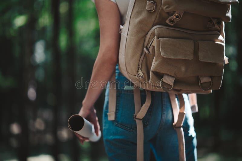 Tillbaka sikt på gullig ung kvinna med hatten, ryggsäcken och lägeöversikten i hand bland träd i skog på solnedgången arkivfoton