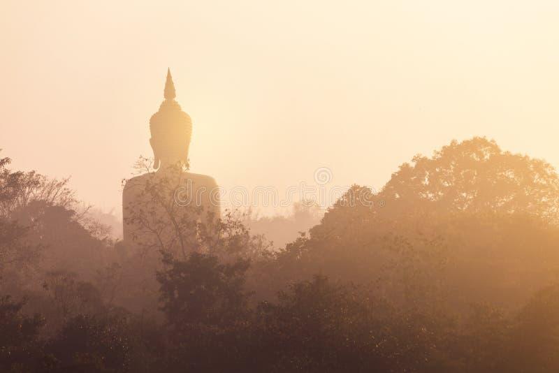 Tillbaka sikts- och konturstaty av Buddha royaltyfri bild