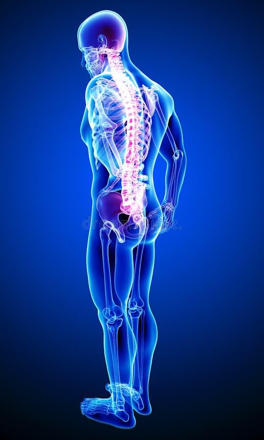 Tillbaka smärta med den fulla kroppen vektor illustrationer