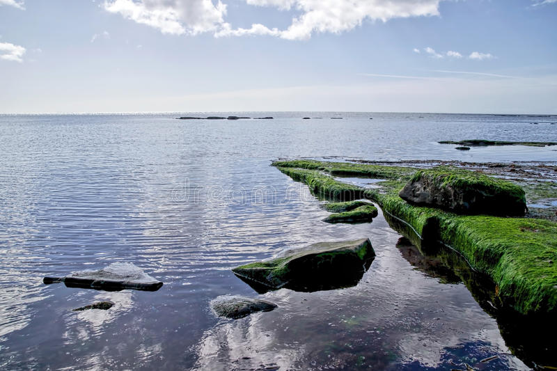 Tillbaka strand - Lyme Regis royaltyfri foto