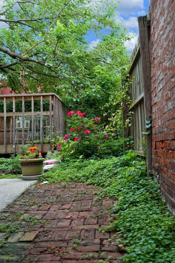 tillbaka trädgårds- gård fotografering för bildbyråer