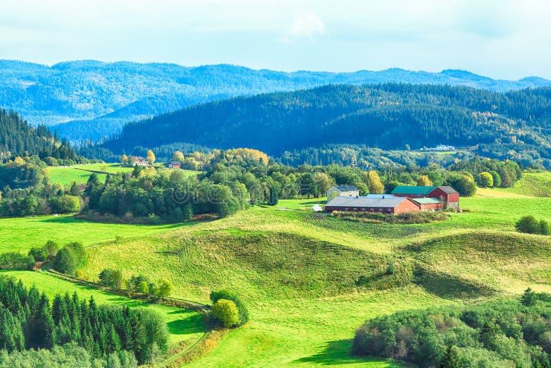 Tillermarka,挪威 免版税库存照片