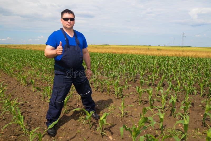 Tillfredsställd bonde på havrefältet arkivfoto