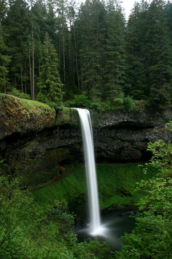 tillstånd för fallsparksilver royaltyfri foto