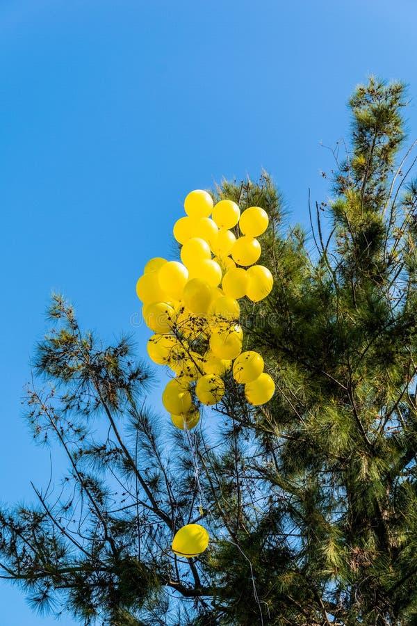 Tilltrasslade ballonger fotografering för bildbyråer