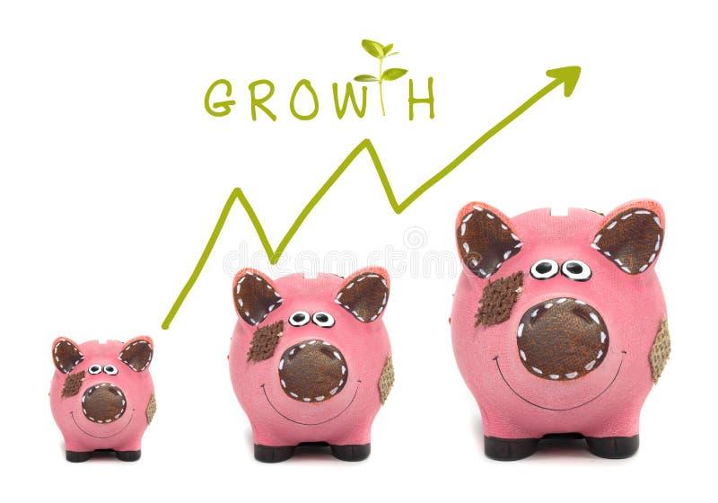 Tillväxt av ditt pengarbegrepp royaltyfri bild