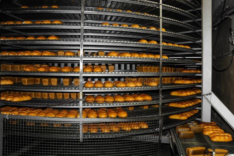 Tillverkning av bageriprodukter i fabriken arkivfoto