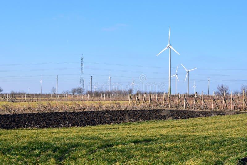 tilth领域的风力场 库存图片