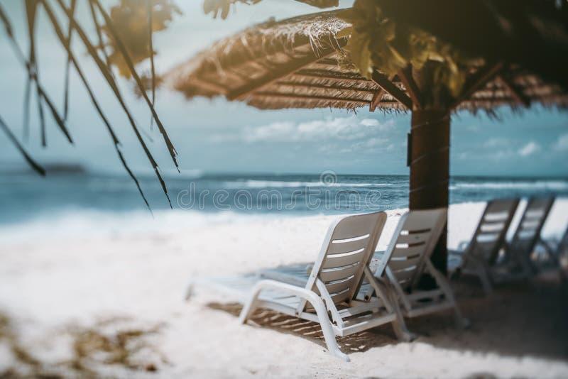 Tiltshift-Ansicht des Erholungsortstrandes mit Recliners, Palmblätter, Meere lizenzfreies stockfoto