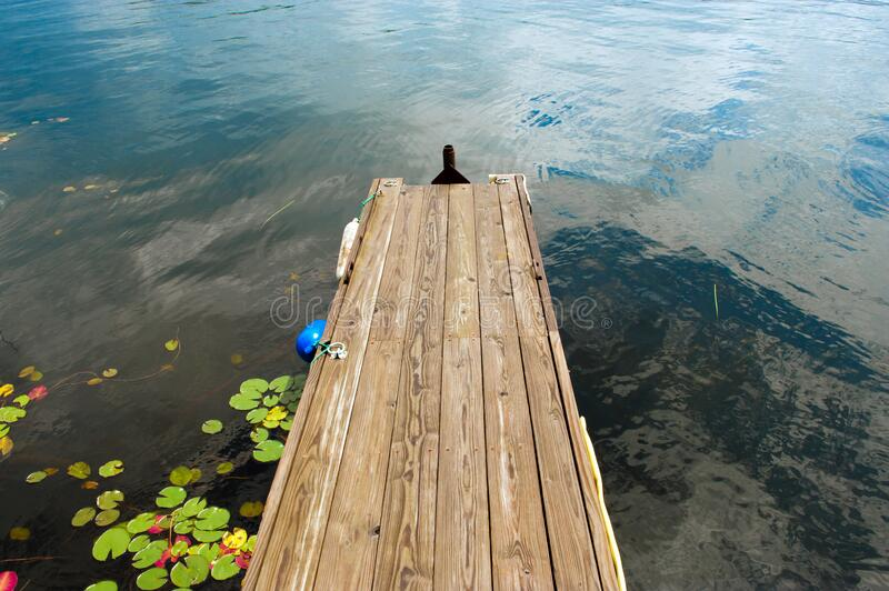 Gangplank to the lake. Wooden gangplake with water lilies on water, Lake Canada, USA stock image