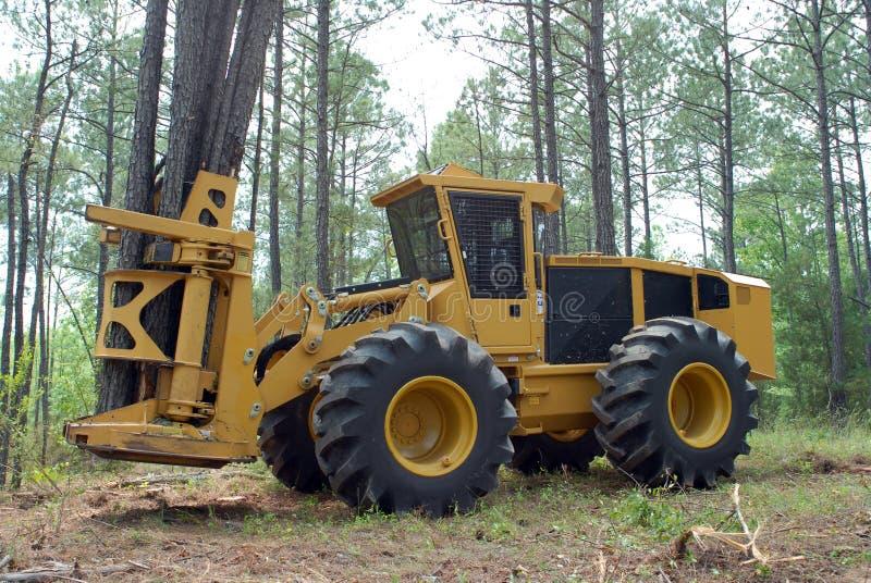 Download Timber harvesting stock photo. Image of lumberjack, craftsman - 36337488