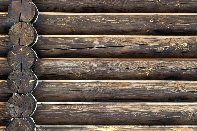 Timber house wall from wood logs. Background with copy space. Close-up front view with corner intersection in left side. Wood annual rings. Place for custom stock images