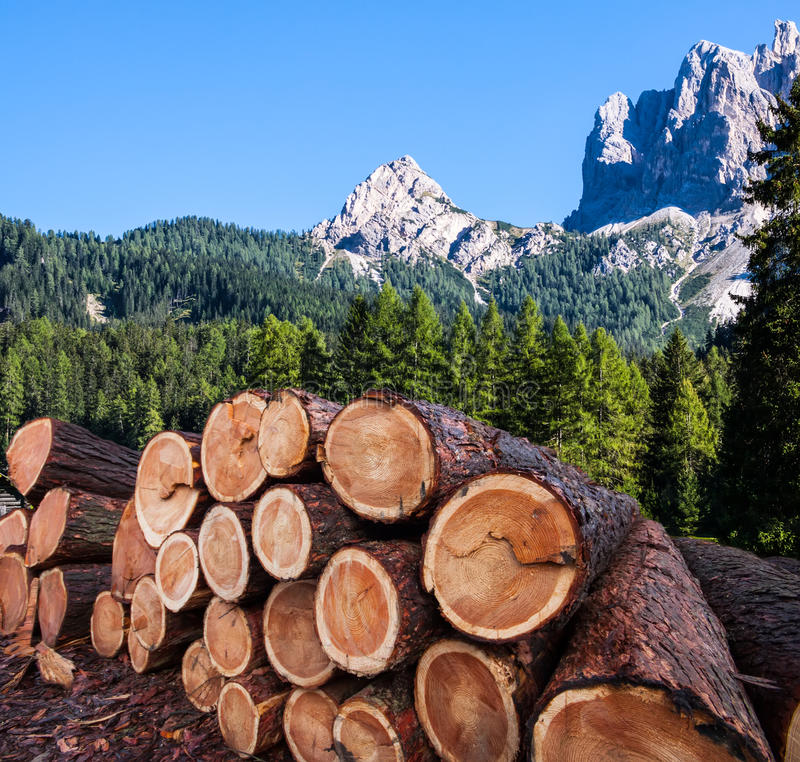 Download Timber Logging In Austrian Alps Stock Photo - Image of sustainable, wilderness: 39512194
