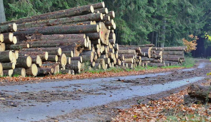 Timber ready for transport, South Bohemia. Czech Republic stock photography